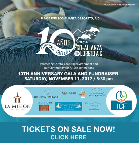 10th annual anniversary gala and fundraiser