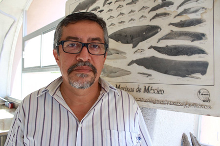 Dr. Gerardo González Barba, Paleontogist, Dir. Museo de Ciencias Naturales de la UABCS