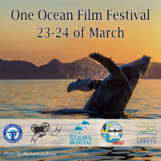Ocean Film Festival Order Tickets Today